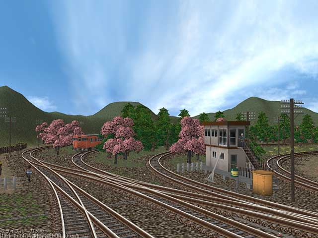 40DS桜並木