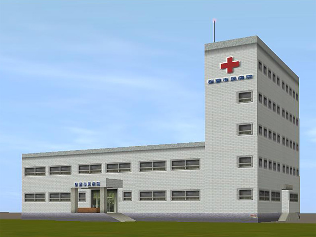 The City Hospital (rev)